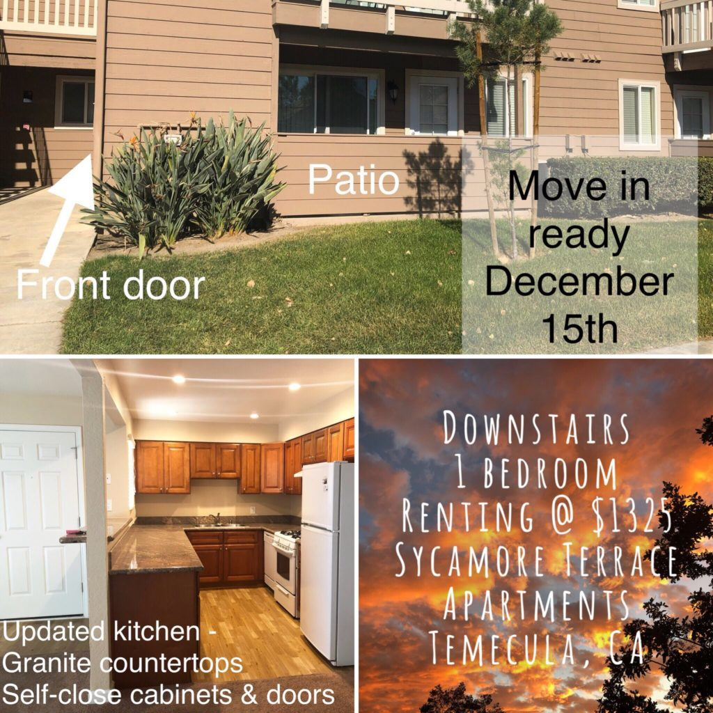 Sycamore Terrace Apartments: Beautiful Remodeled Apartment Available Before The New
