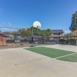 """""""Find entertainment easily with our various amenities offered on the property such as our full-court basketball court."""""""