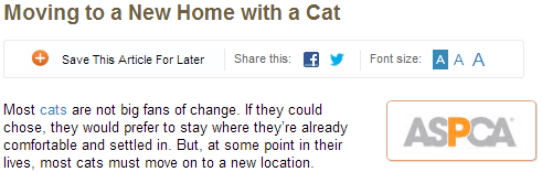 moving to a new home with cat
